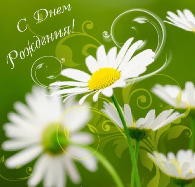 Хороших, красивые открытки с днем рождения ромашки женщине