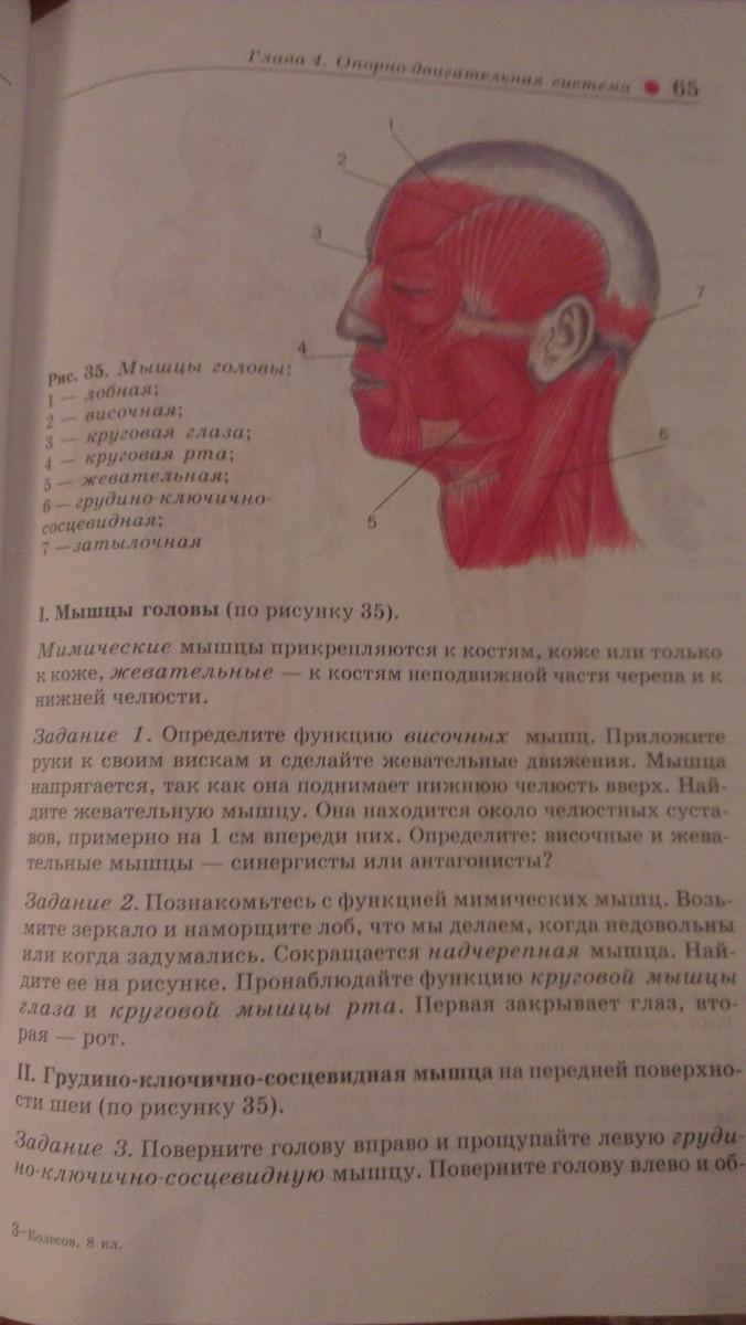 Гдз по биологии лабораторная работа по биологии мышцы человеческого тела