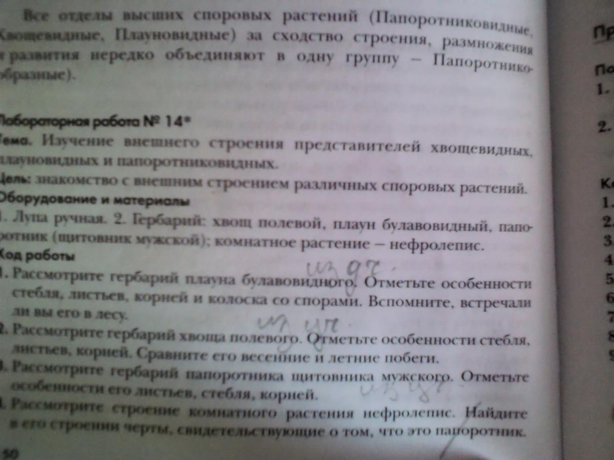 всего лаборатрная работа номер 4 пономарева 6 клас ООО, Салон ортопедической